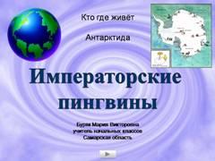 "<img src=""http://mwburak.ucoz.ru/189.jpg"" border=""0"" alt="""" />"