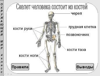 "<img src=""http://mwburak.ucoz.ru/29.jpg"" border=""0"" alt="""" />"